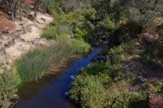 View from Deer Creek Bridge